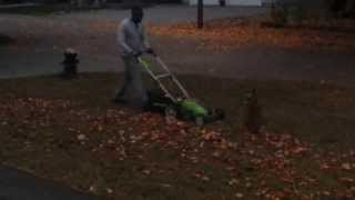 Raking leaves with greenworks lawnmower very easy