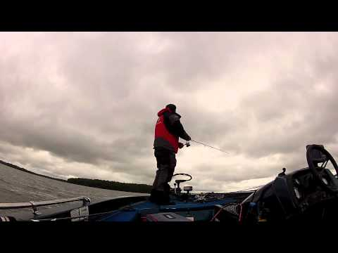Pickerel / Walleye fishing with a swim bait