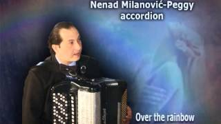 Over the rainbow, Nenad Milanovic-Peggy accordion