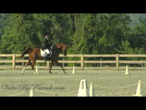 Elizabeth Simmeth-Ensor on Liuteris Star, 3rd-1, Heavenly Waters Dressage, 6/20/2010 Video