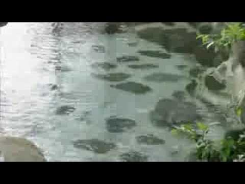伊豆天城湯が島 旅館湯本館の露天風呂