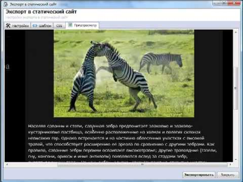 Зеброди HTML экспорт