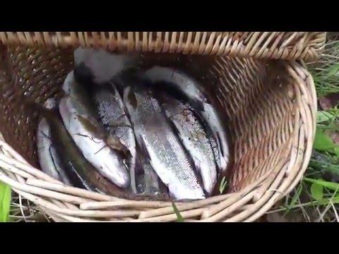 рыбалка энхалук в июне