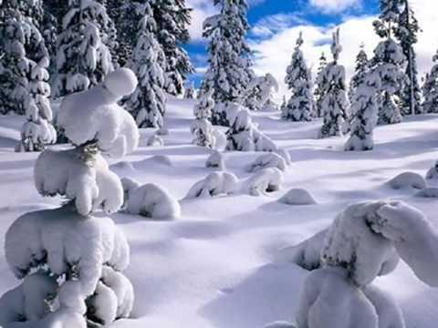 Richard Clayderman Christmas Tree