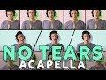 Ariana Grande   No Tears Left To Cry [ACAPELLA COVER]