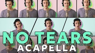 Download Lagu Ariana Grande - no tears left to cry [ACAPELLA COVER] Gratis STAFABAND