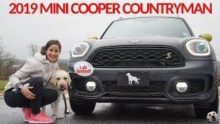 2019 Mini Cooper SE Countryman All4: Andie the Lab Review + Winners Announced!