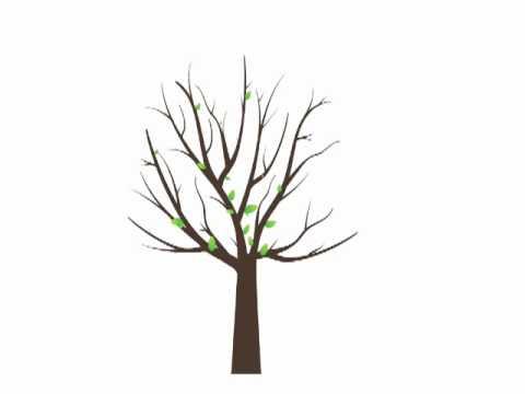 growing apple tree animation