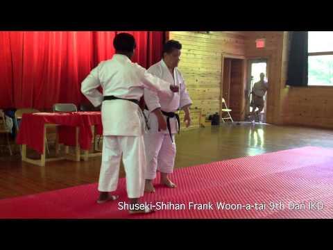 Testing Drive In Heiko, Zenkutsu, Kokutsu Dachi | Shuseki Shihan Frank Woon-a-tai 9th Dan Ikd video