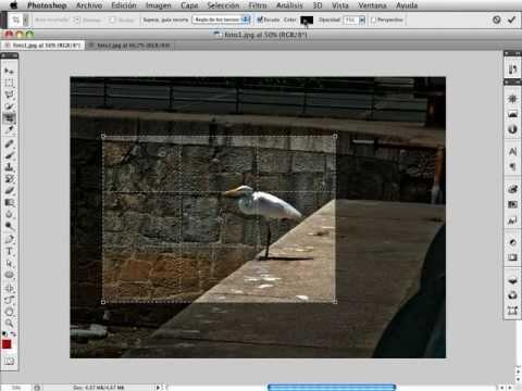 Photoshop CS5 - Herramienta Recortar