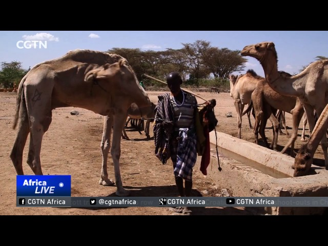 Millions in Ethiopia affected by recent drought in southern region