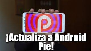 COMO FORZAR ACTUALIZACIÓN A Android 9.0 PIE