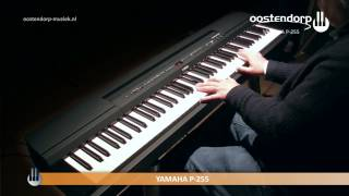 Yamaha P-255 | Sound Demo | Digital Piano