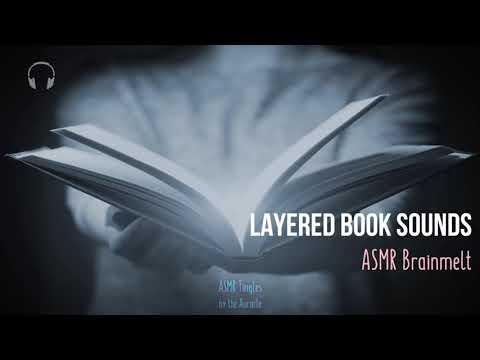 Delectable [ASMR] ★ Book Sounds ★ Brainmelt  [multilayered] [no talking]