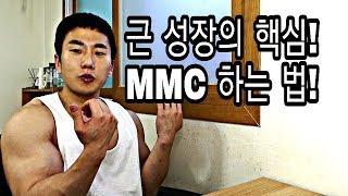 [한의빌더] 근육 성장 2배로 올리는 법 MMC?