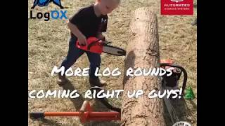 Split Firewood FASTER with the LogOX and Automated Biomass Systems AutoSplit