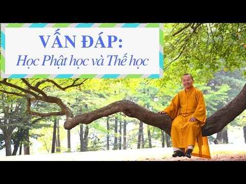 Vấn đáp: Học Phật học và Thế học