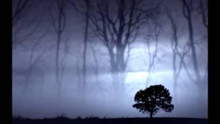 Watch Seal Dreaming In Metaphors video