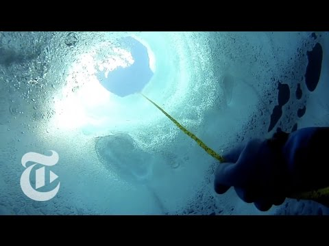 Antarctica Secrets: Scenic Journey to the Bottom of a Lake - Into the Blue