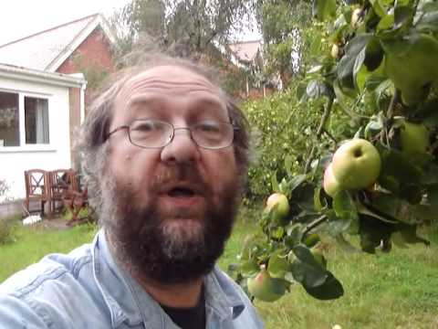 Plan and plant a backyard orchard-part 1