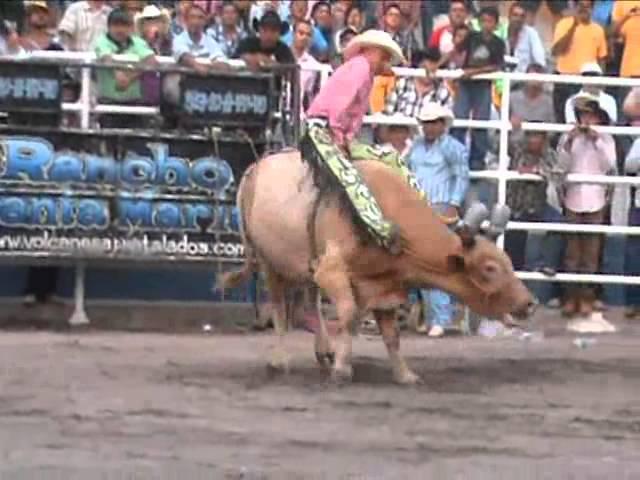 Gorrión de Nayarit montando 10 toros en Tecomán, Colima