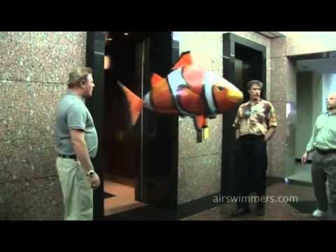 Летающая рыба