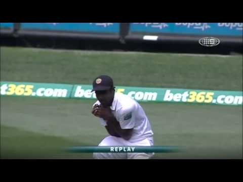 2nd Test v SL - Wade Wicket