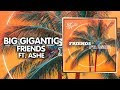 Mid Tempo ● Big Gigantic - Friends (feat. Ashe) | Counter Records
