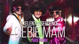Exelent & Sequence - Ciebie mam ( Fake remix )