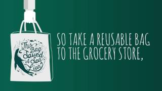 Take a Reusable Bag to the Grocery Store!