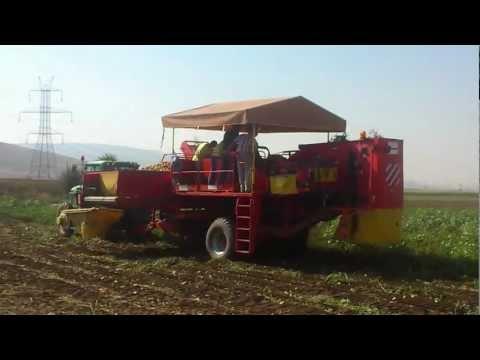 Εξαγωγή πατάτας - Μαυροδένδρι Κοζάνης 2012