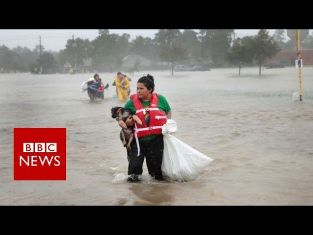 Hurricane Harvey: is the Unprecedented rainfall caused by Climate Change?  - BBC News