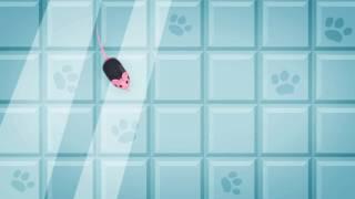Развлечение для кошек и котов. Онлайн игра для ваших любимцев.