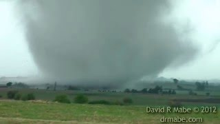 Tornado and Cows, April 14 2012, southwest of Salina near Langley KS.