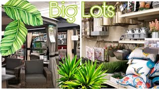 BIG LOTS SHOP WITH ME 2/9/2019 NEW ITEMS