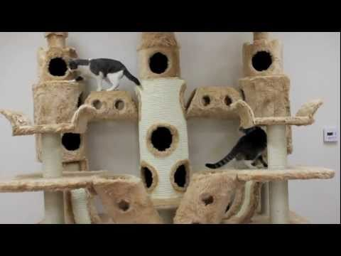 Buckingham Palace Cat Tree by Kitty Mansions
