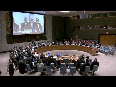 China Appreciates UN Security Council Resolution on Cessation of Hostilities in Syria