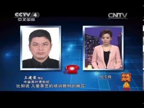 中國-走遍中國-20140320 小小茶博士