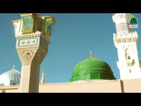 Sachi Tauba, Islamic Bayan, Abdul Habib Attari, Madani Channel