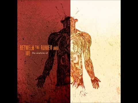 Between The Buried And Me - Bicycle Race