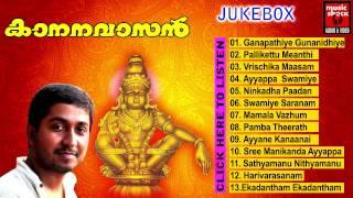 Malayalam Ayyappa Devotional Songs | Kananavasan | Hindu Devotional Songs Audio Jukebox