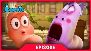 LARVA - GIRL POWER | 2017 Cartoon Movie | Cartoons For Children | 라바 | LARVA Official
