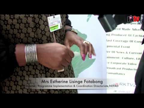 African Union 21st Summit & Golden Jubilee celebration in Addis Ababa