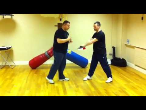 Jeet Kune Do Front Kick Image 1