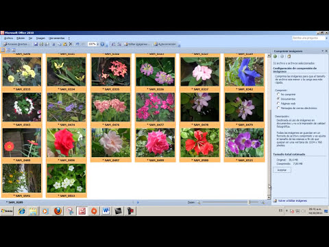Comprimir imagenes en Office Picture Manager 2010