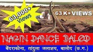 Nagin Dance Balod । नागिन डांस, बेंदराकोना तांदुला जलाशय, बालोद