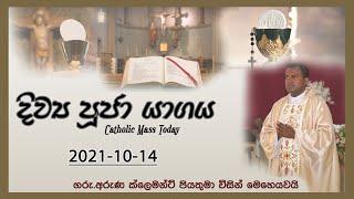 Catholic Mass Today | Seth Fm Mass | Seth Fm  October 14, 2021