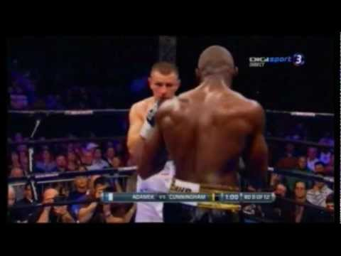 Tomasz Adamek vs Steve Cunningham II WALKA Fight 8 Round 22-12-2012 Boxing
