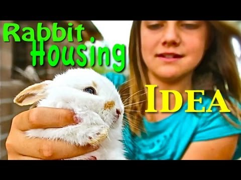 Rabbit Housing Idea - Build a Homemade Hutch filled with Dirt (Natural Habitat)