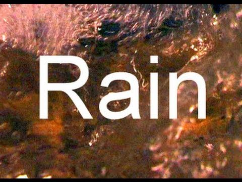 sound Of Rain 90min Sleep And Meditation Video  no Music video